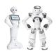 Artificial Intelligence & Robots