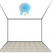 Coating & Waterproofing
