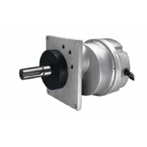 Brushless Gate Motor DZJ403