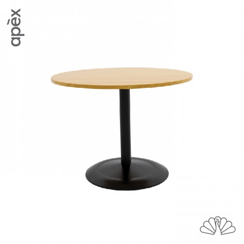 APEX-Office CLEO Discussion Conference Table