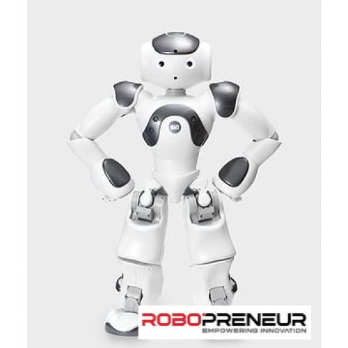 NAO V6 Research And Education Humanoid Robot by Robopreneur