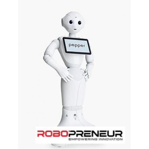 PEPPER Professional Humanoid Robot by Robopreneur