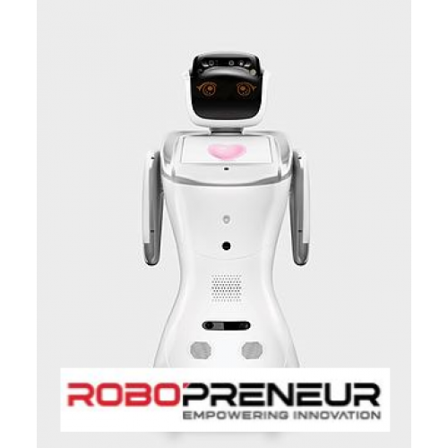 SANBOT Smart Hospitality Business Mobile Robot by Robopreneur