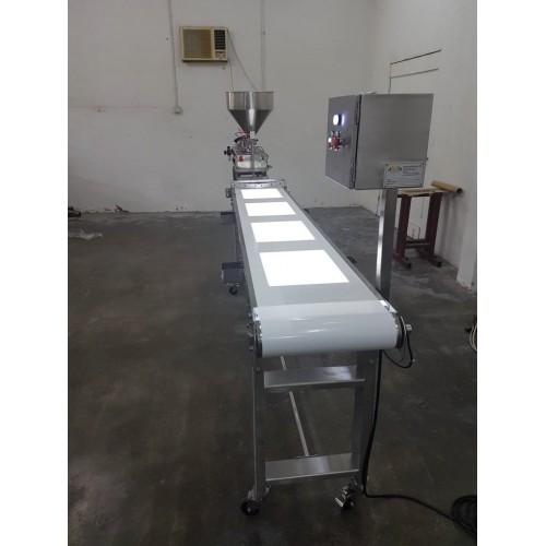 Backlit Conveyor ACS0011 by Amcon systems sdn bhd, Malaysia conveyor supplier