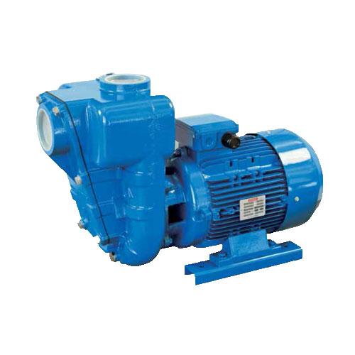 SPERONI Selfpriming Monoblock Pumps HG80-4