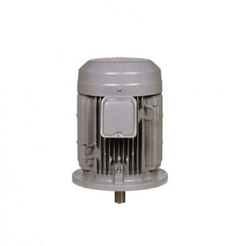 Hitachi 3 Phase Motor TEFC Indoor/Vertical Mount Type 7.5HP - 30HP VTFO-KK 4P IP44